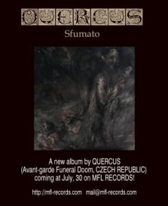 QUERCUS_2014_Announcement